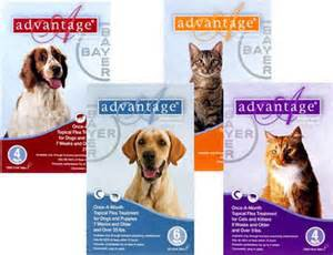 Advantage Flea and Tick Prevention for Dogs
