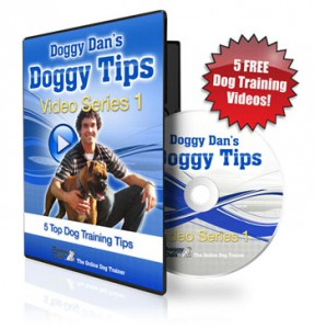 free dog training videos