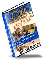 How to Change a Cat's Behavior