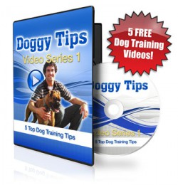 free online dog training classes
