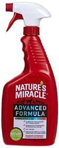 best urine stain remover