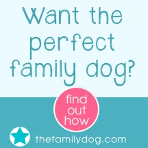 Dog Training for the Kids – That's Actually FUN!!