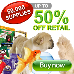 Shopping to Help Animals