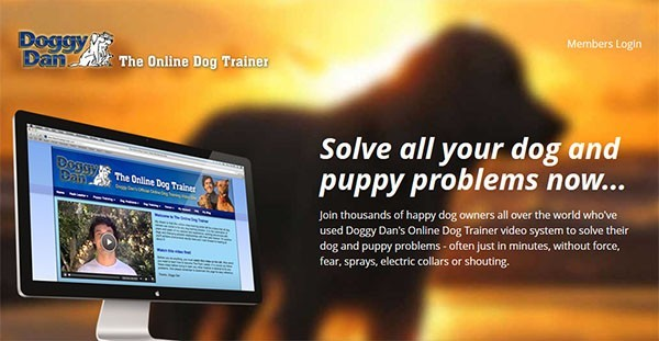 Best Puppy Training Program