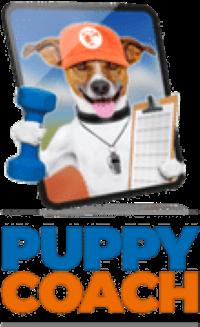 best puppy training program
